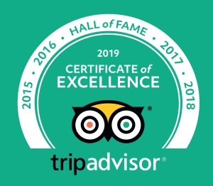 Trip Advisor Certificate of Excellence 2019